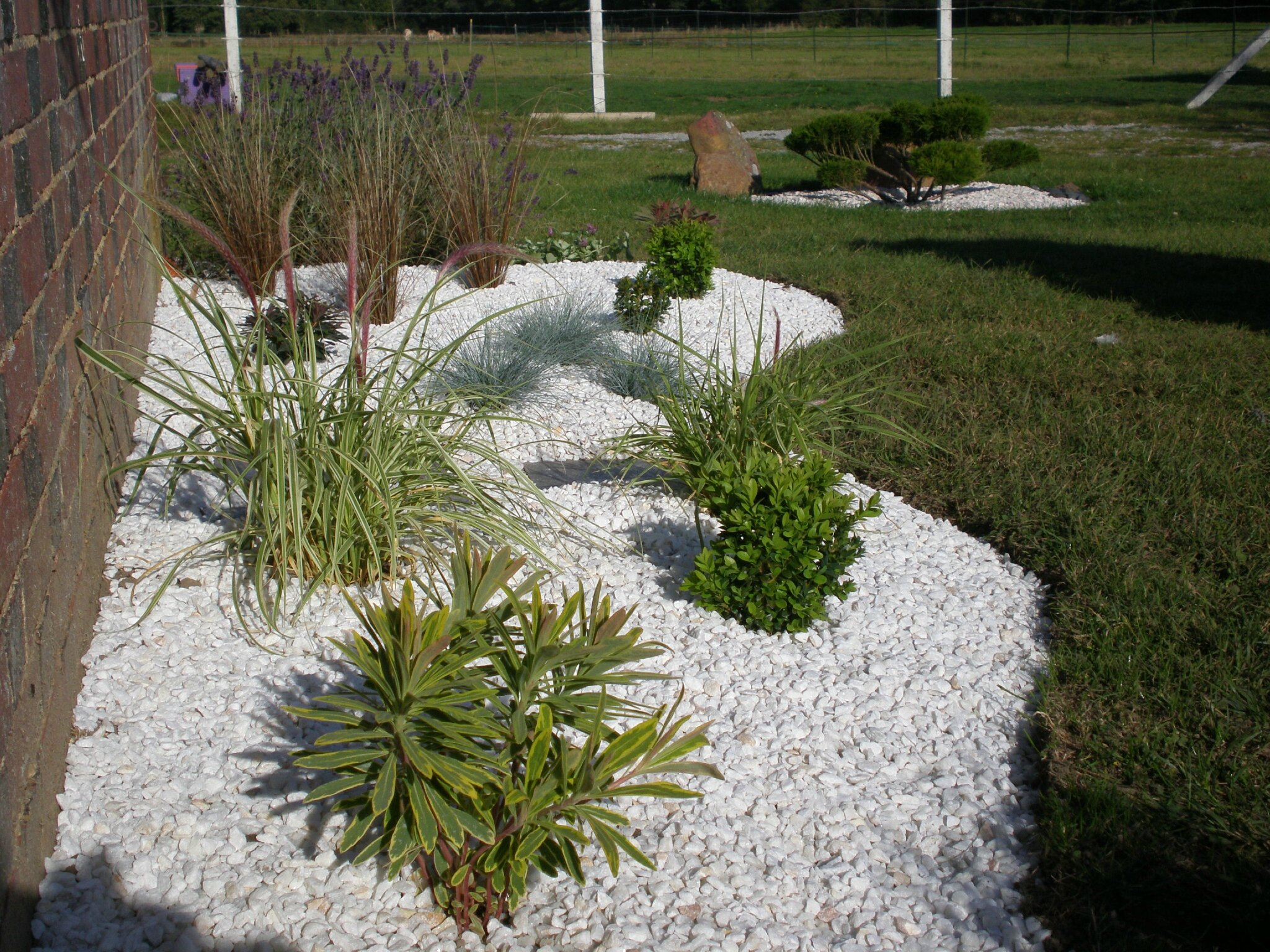 D co jardin graminees for Parterre avec galets blancs
