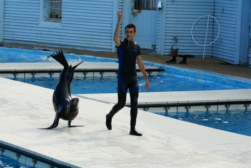 C'est pas chouette ça...Je sais avancer sur mes nageoires !