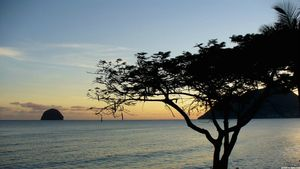 image-wallpaper-paysage-martinique