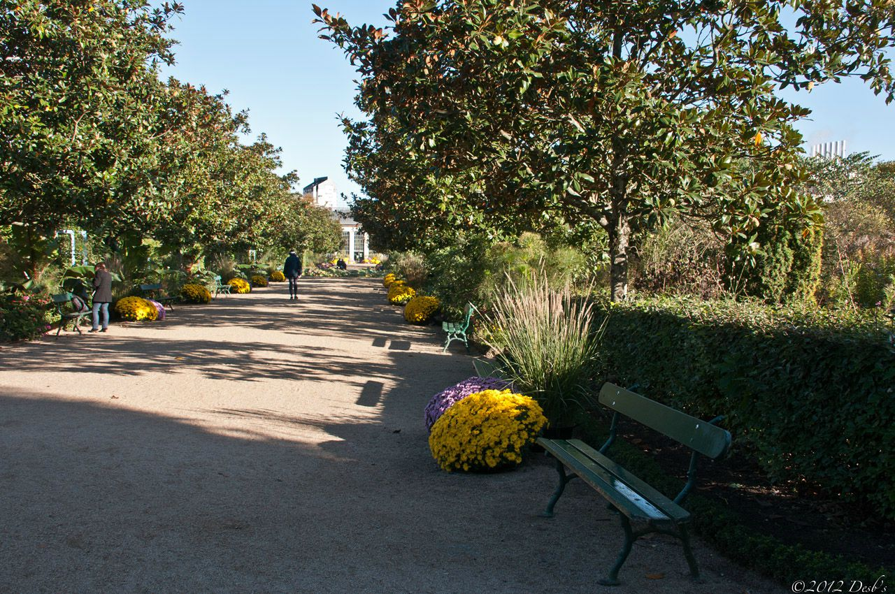 Balade au jardin botanique de tours mes photos for Jardin botanique tours