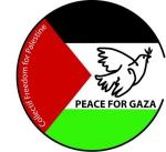 Peace for Gaza 2 collectif freedom 30 mm