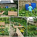 Potager en carr_01