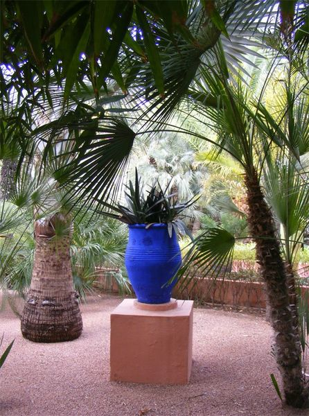Maroc-marrakech-majorelle-yves-st-laurent (3)