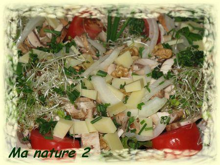 Salade savoyarde aux graines germées 003