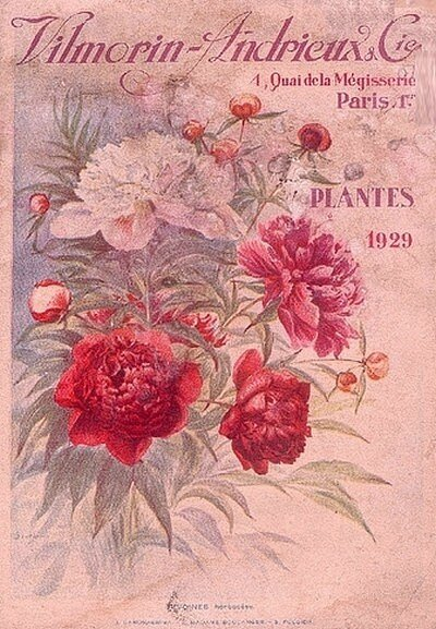Graines sur catalogue promesses d 39 un jardin oubli for Catalogue de jardinage par correspondance