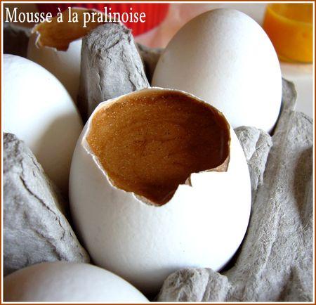 ouet_a_vec_mousse