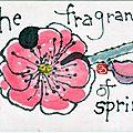 Springred