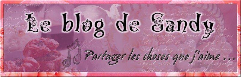 Bannière pour le blog de Sandy