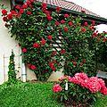 Le jardin et sa palette de couleurs