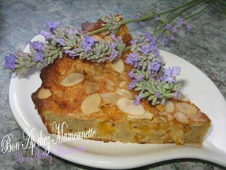 Gâteau moelleux aux prunes sauvages et aux amandes 010
