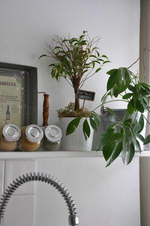 appartement 022