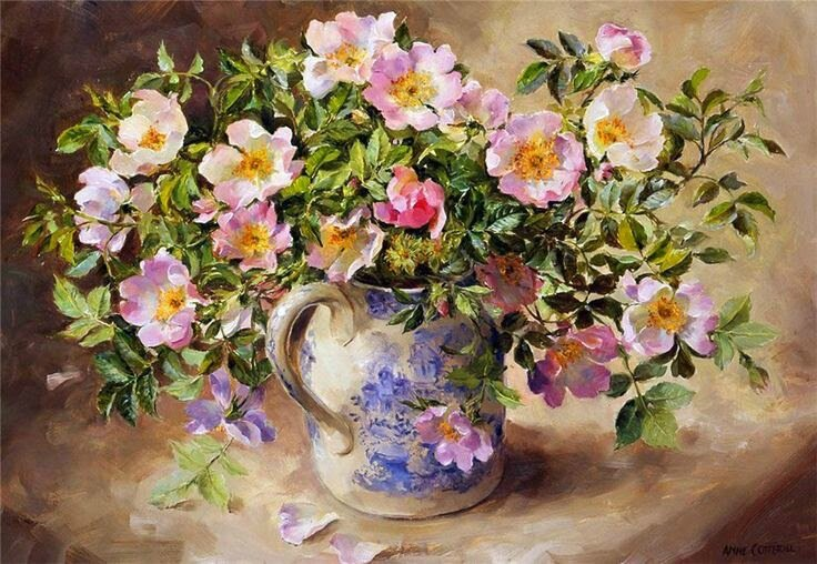 Anne Cotterill 2