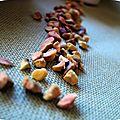 Clafoutis aux pêches et aux éclats de pistache torréfiées