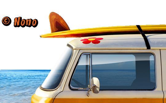 surf 13