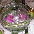 table bulles 008