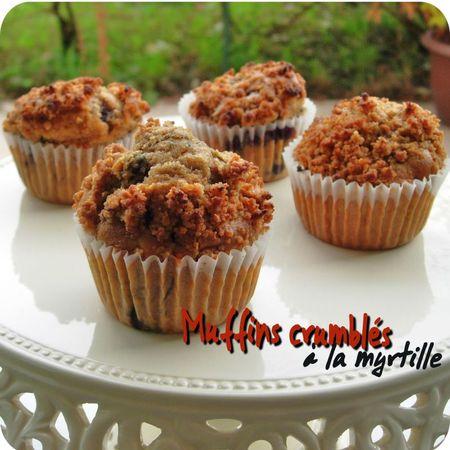 muffins crumblés (scrap2)