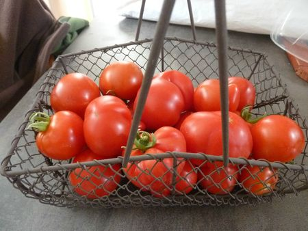 TOMATES 8 JUIN 2012 (4)