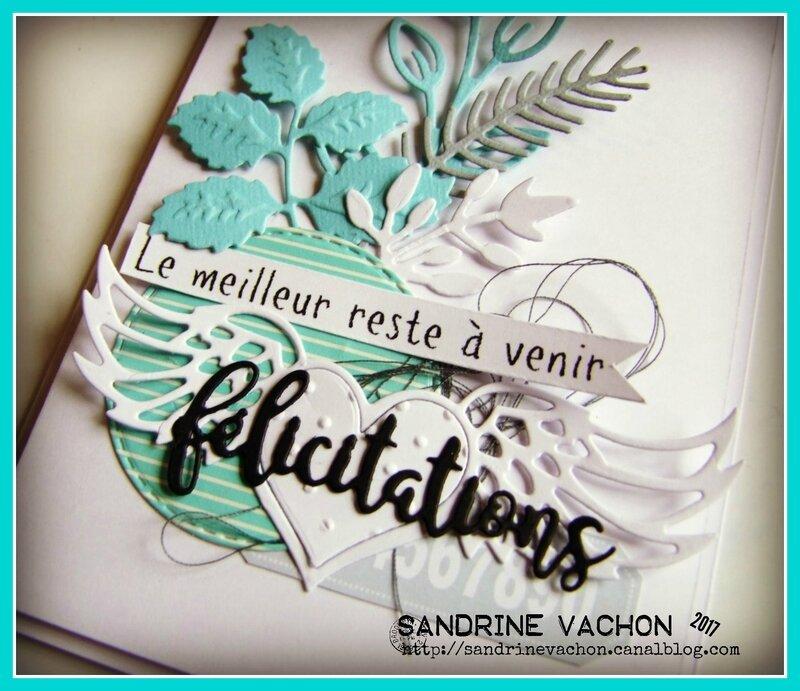 Sandrine VACHON défi 492 juin 2017 (3)