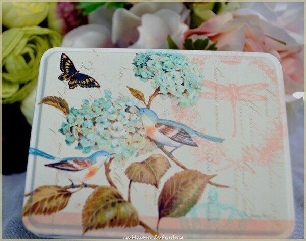 collection oiseau2