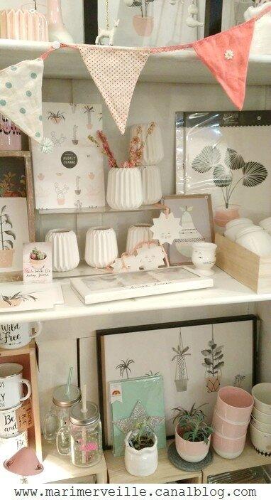 Boutique les fleurs passage Josset paris - 7 - blog marimerveille