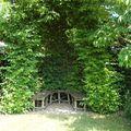 Niche végétale vivante, le jardin de Margueritte à Plobsheim (67