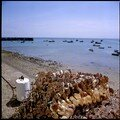 1983-07-Cancale485