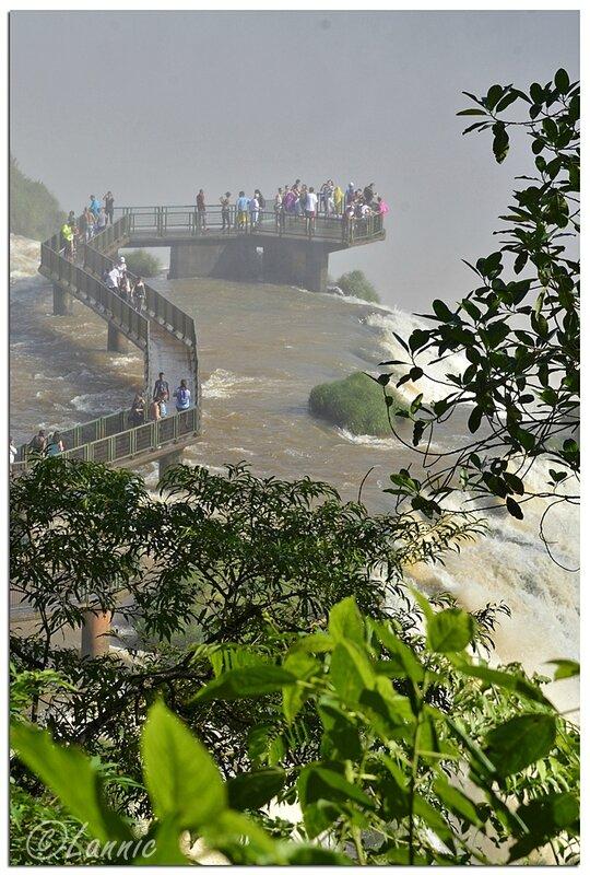 _Argentine_602_Iguazu_Bresil