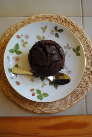 Dark_chocolate_cupcakes_with_icing3