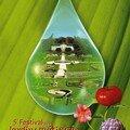 5ème festival des jardins métissés