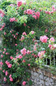 Jardin Le Sidaner et anniversaire Nina 023