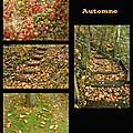 Automne