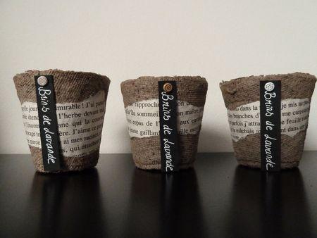 petits pots à semi