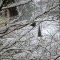 - zut encore la neige -