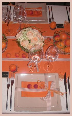 2009_07_07_table_abricots25