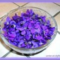 BEIGNETS AUX FLEURS DE VIOLETTE