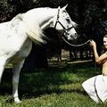 angelina_jolie_by_lachapelle-meadow_horse-with_horse-1