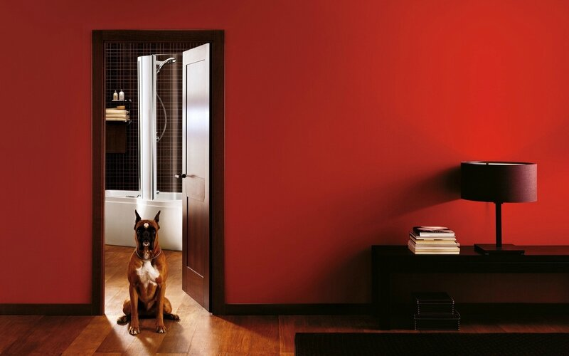 interior-dog-house-red-lamp-books-boxes-bathroom-1920x1200
