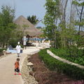 Hôtel Iberostar: accès à la plage