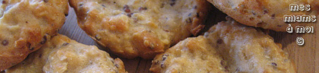 Biscuits apro moutarde et parmesan