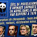 Des espèces en danger, et des prédateurs en augmentation !