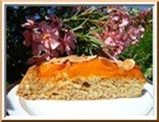 0115s - tarte renversée à l'abricot