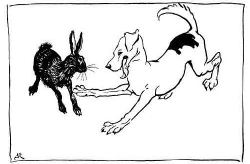 le chien et le lièvre