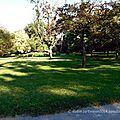 Bois-de-Coulonge-Arboretum-16
