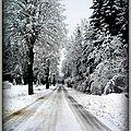 Matin de neige au Poizat (Ain)