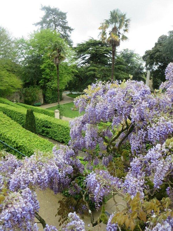 Le jardin des plantes de coutances manche le 30 avril for Scopitone 2015 jardin des plantes
