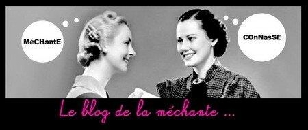 le_blog_de_la_m_chante
