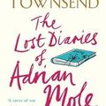 The lost diaries of Adrian Mole 1999-2001 by Sue Townsend