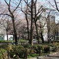 Shinjuku (106)