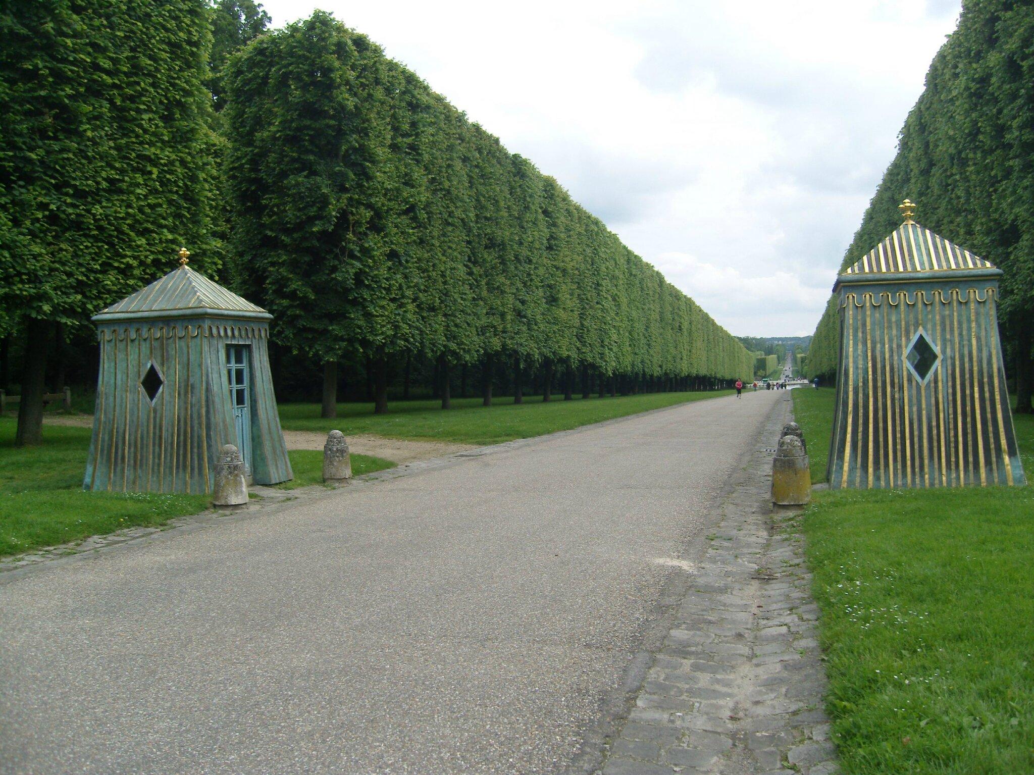 chat Versailles