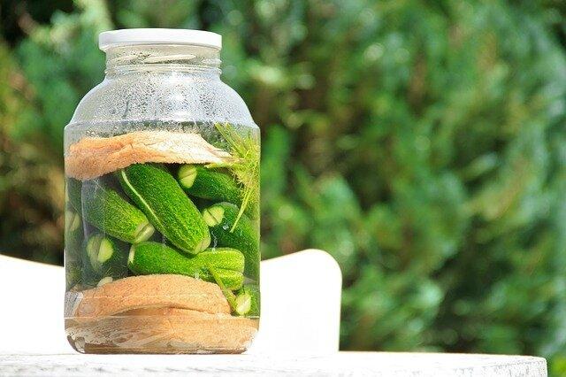 pickled-cucumber-1630906_640